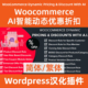 WooCommerce-Dynamic-Pricing-&-Discounts-with-AI下载