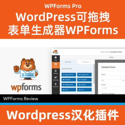 WPfforms-pro中文汉化下载